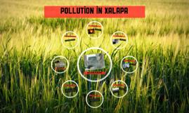 pollution in Xalapa
