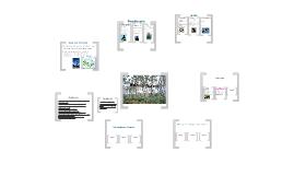 Copy of Biome Presentation Template 2