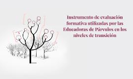 Instrumento de evaluación formativa utilizadas por las Educa