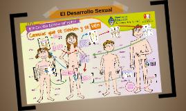 El Desarrollo Sexual