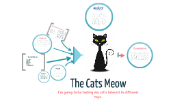 The Cats Meow ( science project )