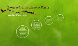 Zwierzęta zagrożone w Polsce