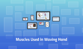 Muscles Used in Waving Hand
