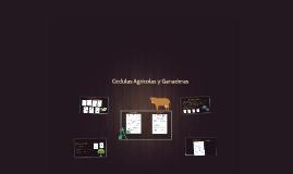 CEDULAS AGRICOLAS Y GANADERAS