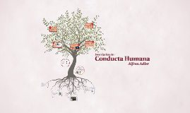 Copy of Conducta Humana