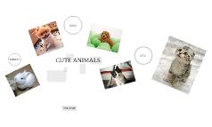 prezi-animals