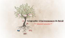 Géographie: L'environnement du Brésil