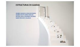 ESTRUCTURAS EN GUADUA