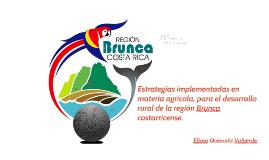 Agricultura en Región Brunca