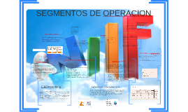 SEGMENTOS DE OPERACION