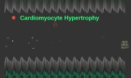 Cardiomyocyte Hypertrophy By Alexander Fogarasi and Ethan Nagasing