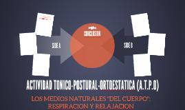 ACTIVIDAD TONICO-POSTURAL