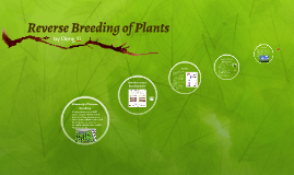 Reverse Breeding of Plants