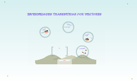 Copy of ENFERMEDADES TRANSMITIDAS POR VECTORES
