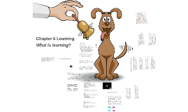 Chapter 6.1 Learning