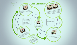 Oreo Cookie Lab