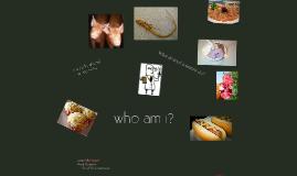 Copy of Who am I?