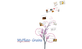 MyPlate- Grains