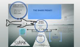 sharks are awsome