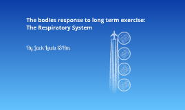 The bodies response to long term exercise: The Respiratory System