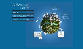 6.2.3 탄소 순환