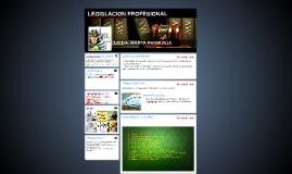 Copy of LEGISLACION PROFESIONAL