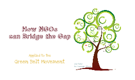 How NGOs can Bridge the Gap