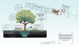 Copy of Copy of A política de avaliação da educação superior no Brasil em questão