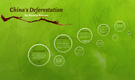 China's Deforestation