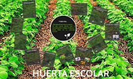Copy of HUERTA ESCOLAR