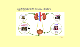 Care of the Patient with Renal/GU Alterations