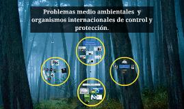 Problemas medio ambientales  y