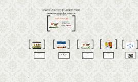 Graphic Organizer for Comprehension