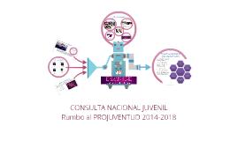 Copy of Consulta Nacional Juvenil (actualizada)
