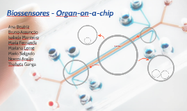 Biossensores - Organ-on-a-chip