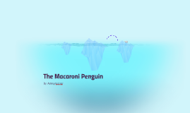 The Macaroni Penguin