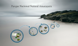 Parque Nacional Natural Amacayacu