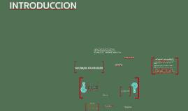 Copy of Mapas conceptuales C.A.G.