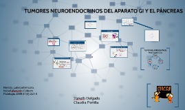 Tumores neuroendocrinos del aparato gastrointestinal y el pá