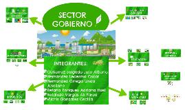 SECTOR GOBIERNO