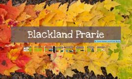 Blackland Prarie