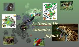 Extincion De    Animales: