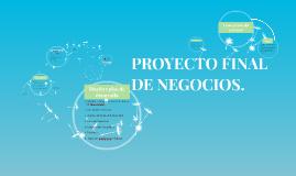 PROYECTO FINAL DE NEGOCIOS.
