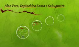 Aloe Vera, Espinehira Santa e Sabugueiro