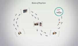 Basics of Dog Care