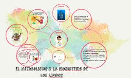 el metabolismo y la biosintesis
