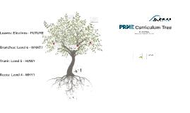 PRME Curriculum Tree