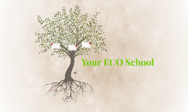 Your ECO School