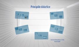 Copy of Copy of Principiile Didactice