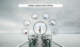 Copy of TORRE ARTROSCOPIA STORZ